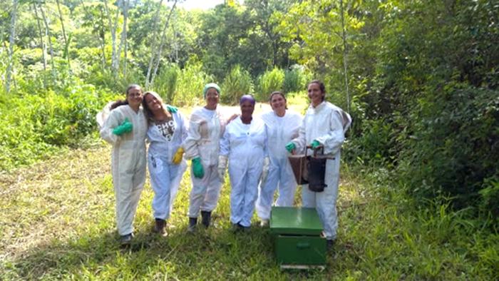 mulheres apicultoras em trajes de cultivo de abelhas