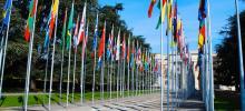 bandeiras de vários países hastadas em matros